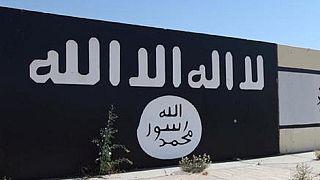 Islamic State fires ISWAP leader Al Barnawi – Nigerian journalist