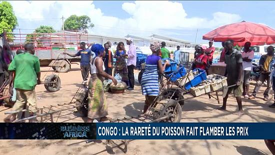Congo: Fish scarcity drives prices up