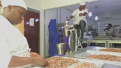 Entrepreneur uses bicycle to make organic chocolate