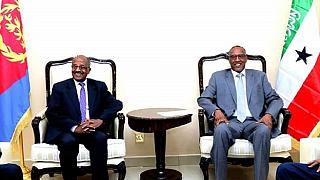 Eritrean delegation in Somaliland: Regional cooperation tops agenda