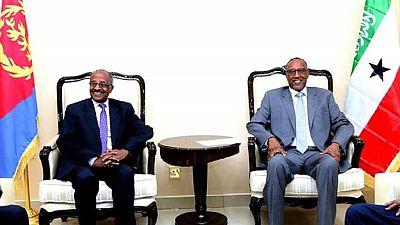 Eritrean delegation in Somaliland: Regional cooperation tops agenda