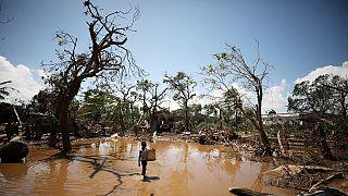 Cyclone Ida : une femme donne naissance perchée sur un arbre au Zimbabwe