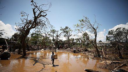 Cyclone Idai : une femme donne naissance perchée sur un arbre au Zimbabwe