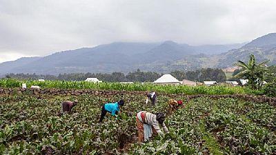 Rwanda: la source de la réconciliation post-génocide