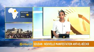 Sudan: Anti-government protests take new turn [The Morning Call]