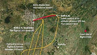 Exploring factors that caused Ethiopian Airlines crash