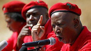 Zimbabwe land compensation: Malema slams 'sellout' Mnangagwa