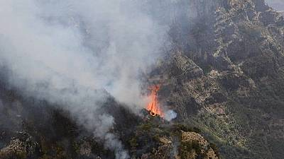 Ethiopia's 'Roof of Africa' forest burns: Israel joins fire combat