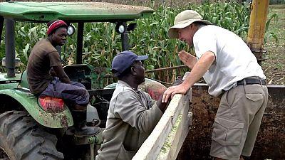 Zimbabwe : 18 millions de dollars d'indemnisation pour les fermiers blancs expulsés