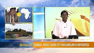 4000 cas de chikungunya détectés au Congo [Morning Call]
