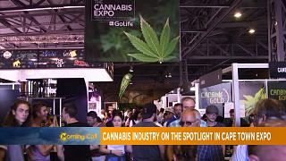 Cannabis industry on the spotlight in Cape Town Expo [The Morning Call]