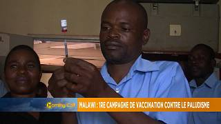 Malawi launches experimental malaria vaccine [The Morning Call]