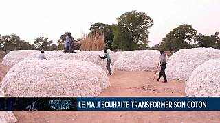 Mali seeks to add value to cotton [Business Africa]