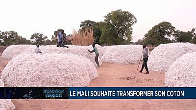 Le mali souhaite transformer son coton [Business Africa]
