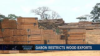 Gabon restricts wood exports [Business Africa]