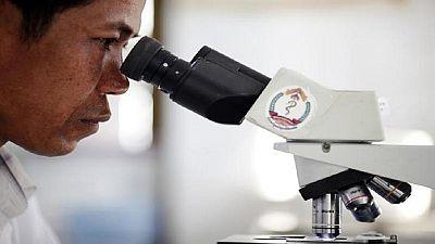 """Contre le paludisme : l'artemisia, """"produit miracle"""" qui inquiète les scientifiques"""