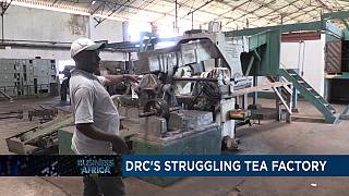 DRC's struggling tea factory [Business Africa]
