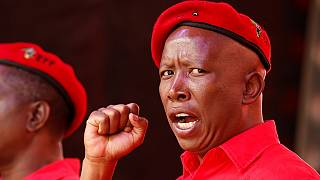 AU, 'confused brothers who do each other favours' – South Africa's Malema