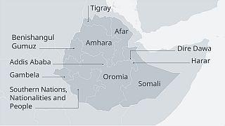 Ethiopia's Somali, Afar regions spar over 2014 agreement