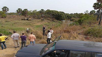 """Bénin-Disparition : le corps du guide """"identifié"""", les deux touristes français toujours introuvables"""