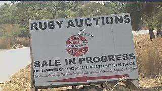 Ex-Zimbabwe president Mugabe's farm equipments auctioned