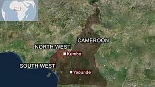 Cameroon: some U.N Security Council Member States meet on humanitarian crisis