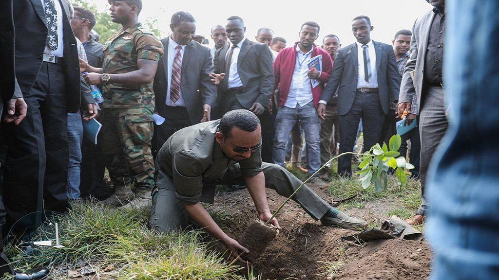 Ethiopia PM launches 4 billion tree planting project