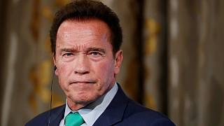 Schwarzenegger resurrects 'Africa is not a country' debate