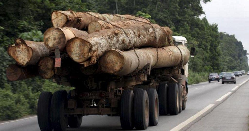 Gabon president fires vice, forestry minister over timber scandal
