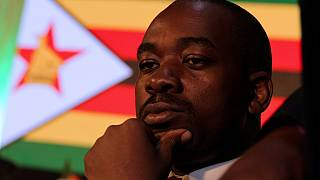 Zimbabwe's main opposition elects Chamisa as leader