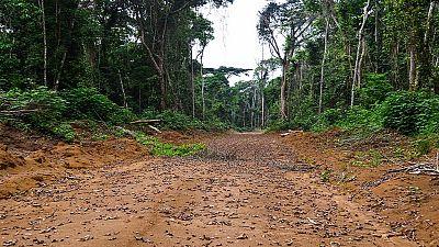 Congo-Redd+ : familiariser les populations aux outils anti-corruption