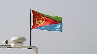Eritrea says US terror blacklisting was 'erroneous', welcomes removal