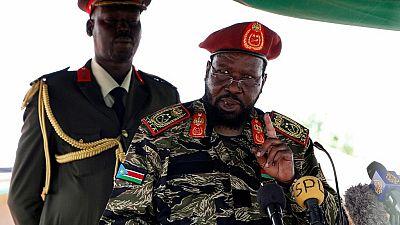 Soudan du Sud : l'embargo sur les armes prorogé