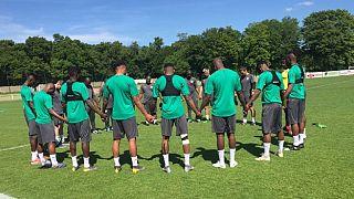 CAN 2019 : la Côte d'Ivoire privée de son gardien Abdoul Karim Cissé