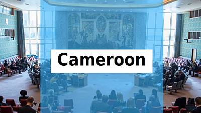 UNSC must escalate Cameroon crisis on its agenda – Rights groups