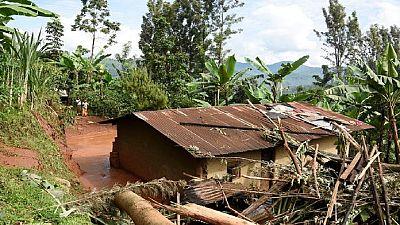 Prudence les parcs sont situés près de la frontière du Congo zone rouge.