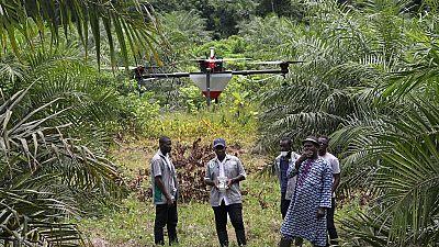 Côte d'Ivoire : les drones à l'aide de l'agriculture