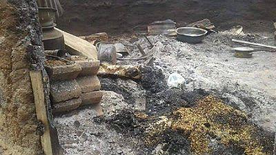 Mali: au moins 95 tués dans un village dogon (élu local et source sécuritaire)