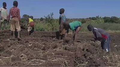 Video: Poverty, culture drive child labour in Malawi
