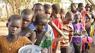 Soudan du Sud : la faim progresse malgré l'accord de paix, selon l'ONU