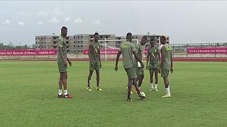CAN-2019 : le Mali évite la suspension et sera emmené par Maréga