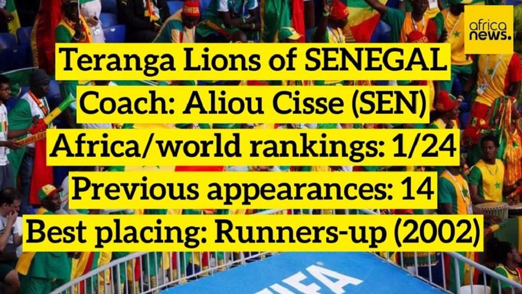 AFCON 2019 semi-final fixtures set [Details] | Africanews