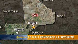 Mali govt steps up security [The Morning Call]