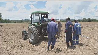 Zimbabwe : des fermiers blancs indemnisés