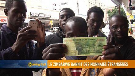 Le Zimbabwe interdit les devises étrangères