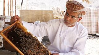 Why is honey in Oman creating a business buzz?