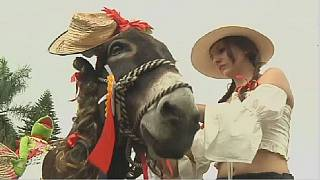 Colombia's Donkey festival