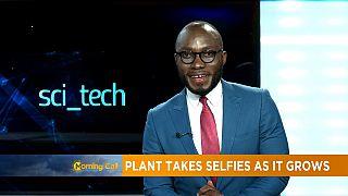 La plante qui prend des selfies en grandissant [Sci tech]