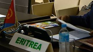 UN renews Eritrea human rights monitoring: African reps abstain, vote against
