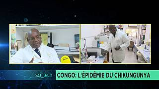 Congo: Chikungunya outbreak and research